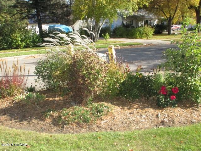 SE corner of yard
