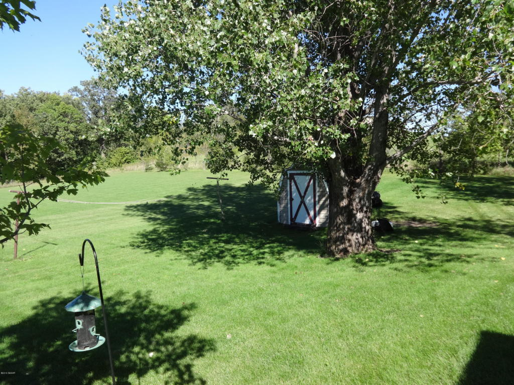 Backyard With Small Shed