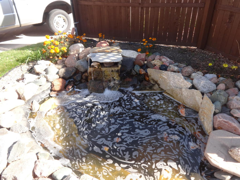 Pond by Front Entrance