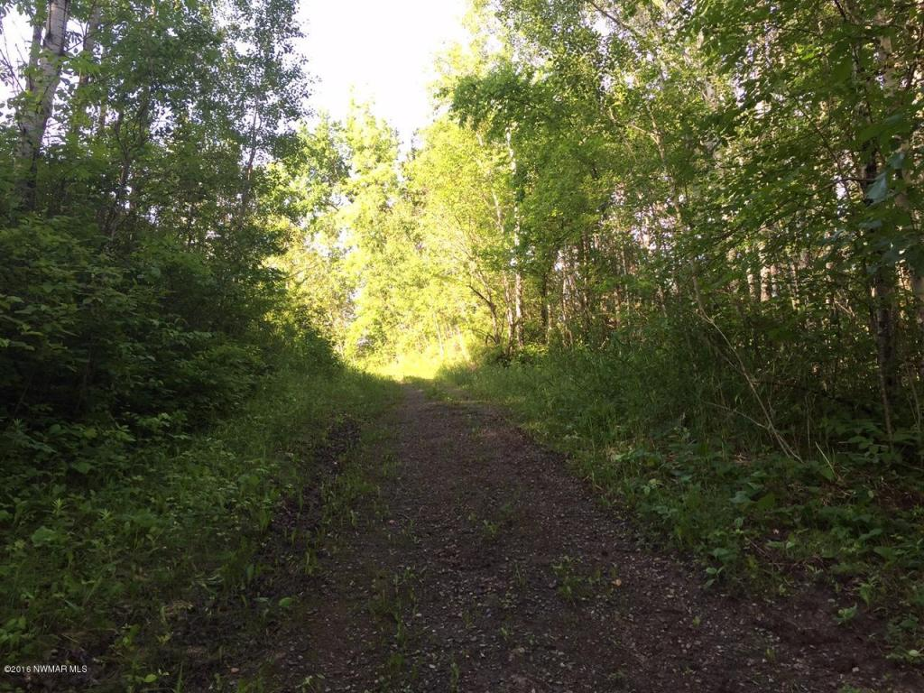 trail to Rainy River & Cabin