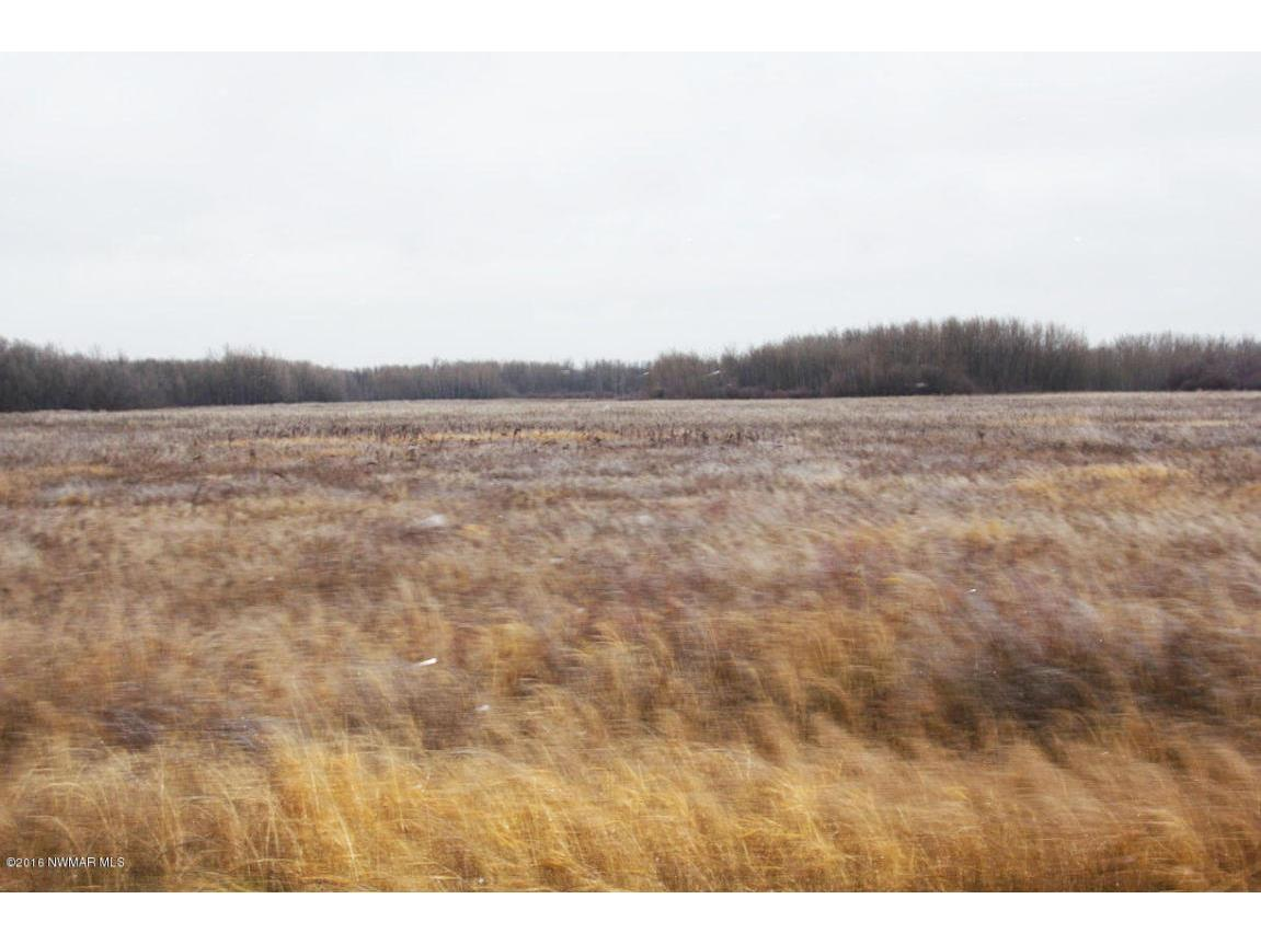 land picture