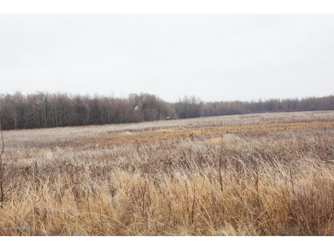 pic of land with ground blind