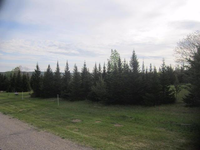 Cedar Rd