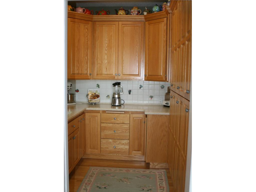 Kitchen Pantry (6)