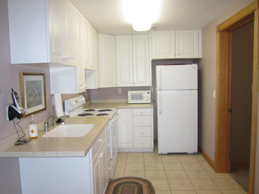 Kitchenette - lower level
