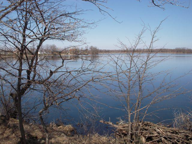 Star Lake Lot