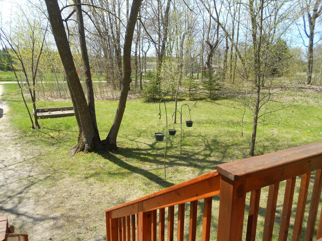 Back yard from deck