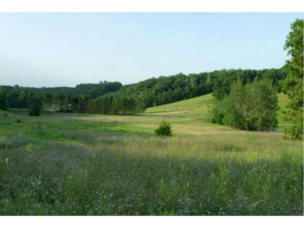 1363 birch park circle houton wi 54082 mls 1525339 edina realty