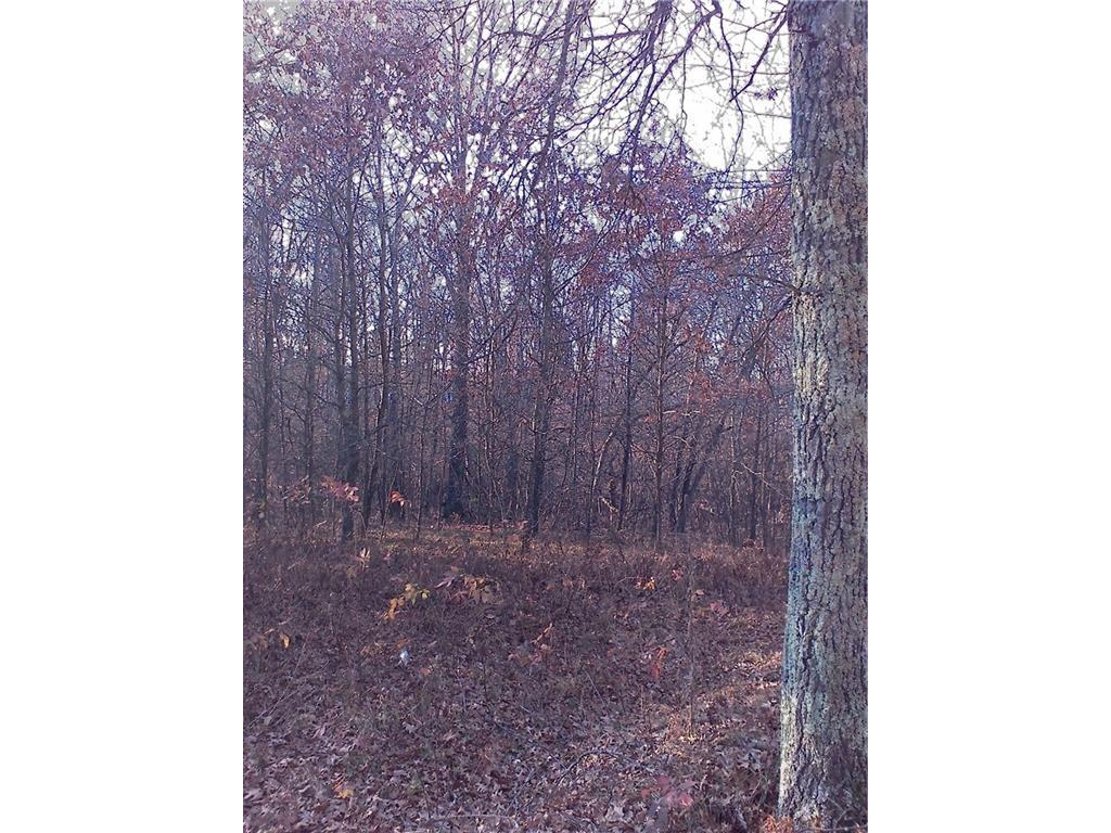 Great 4 acres of woods for hunting