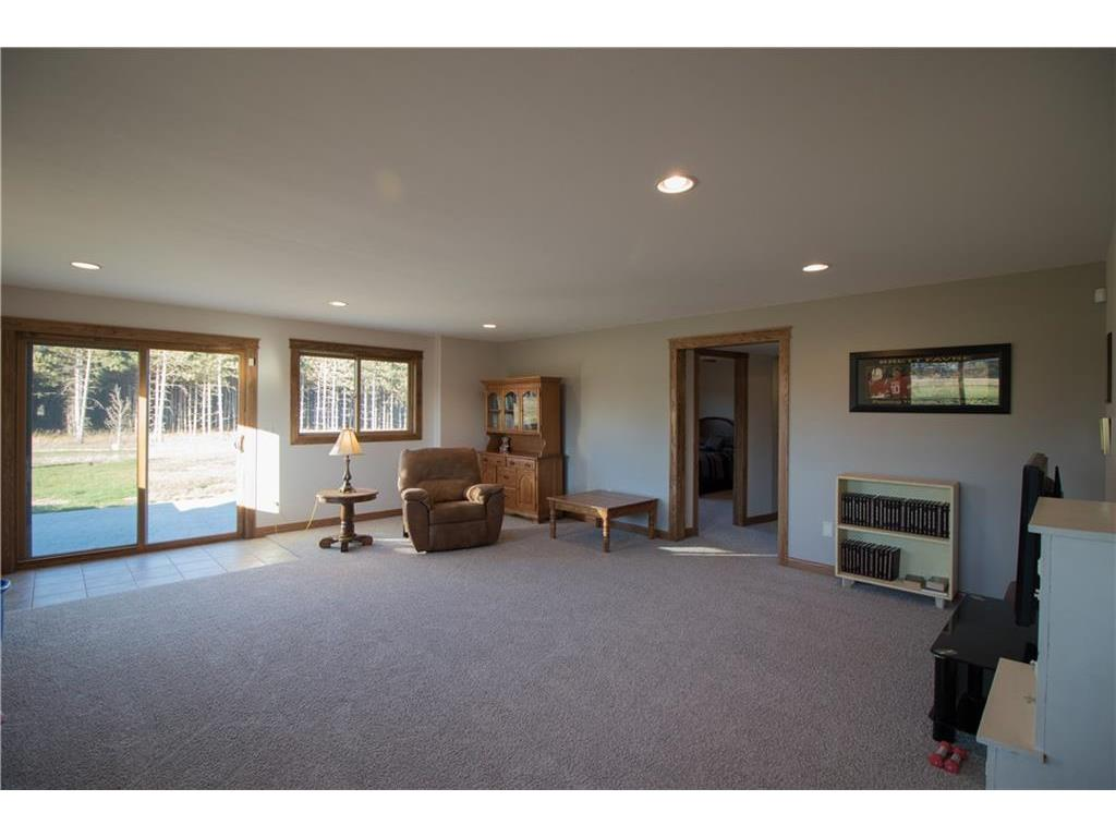 Family Room in the walkout basement