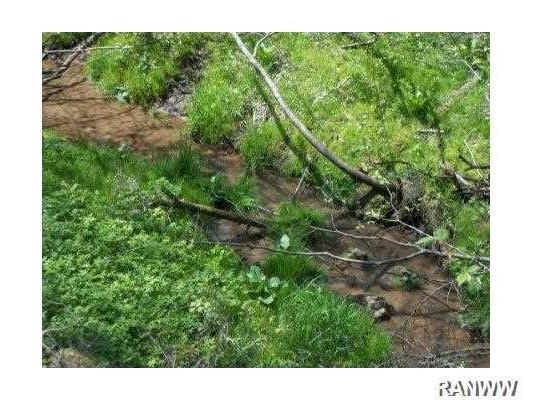 Land/Lot. small feeder creek