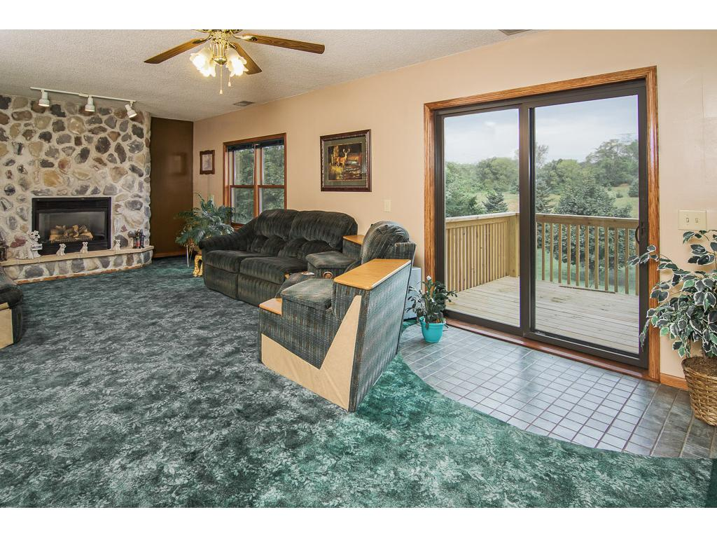 Lower level family room features a gas stone fireplace and walkout.