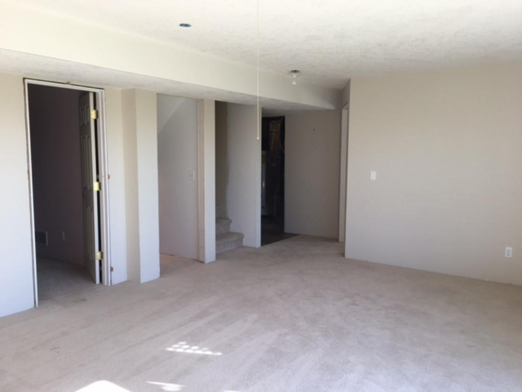 Another view of lower level. The lower level needs doors and trim to be complete~