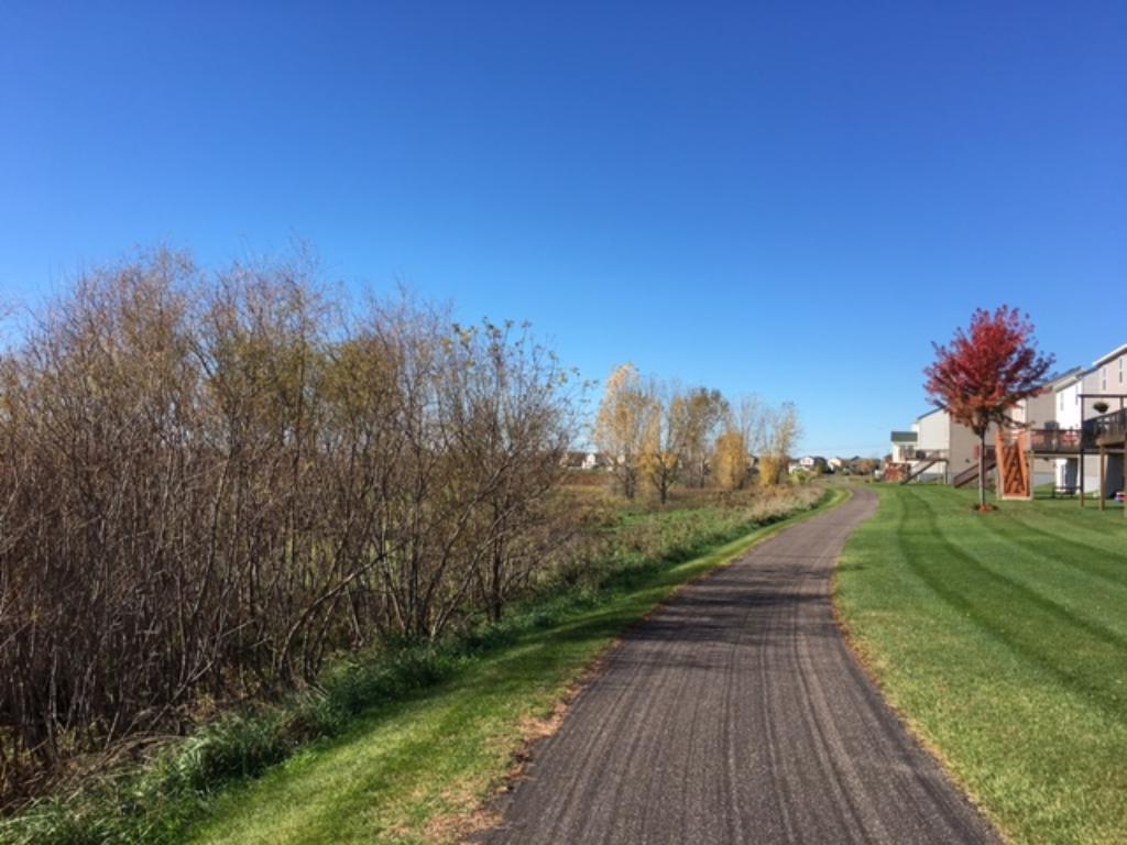 Walking trails and wetland views~