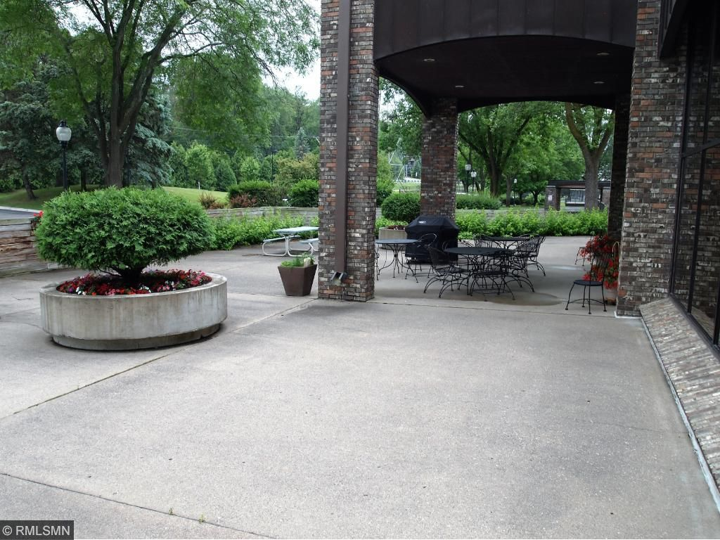 Patio Gathering Area with Grill