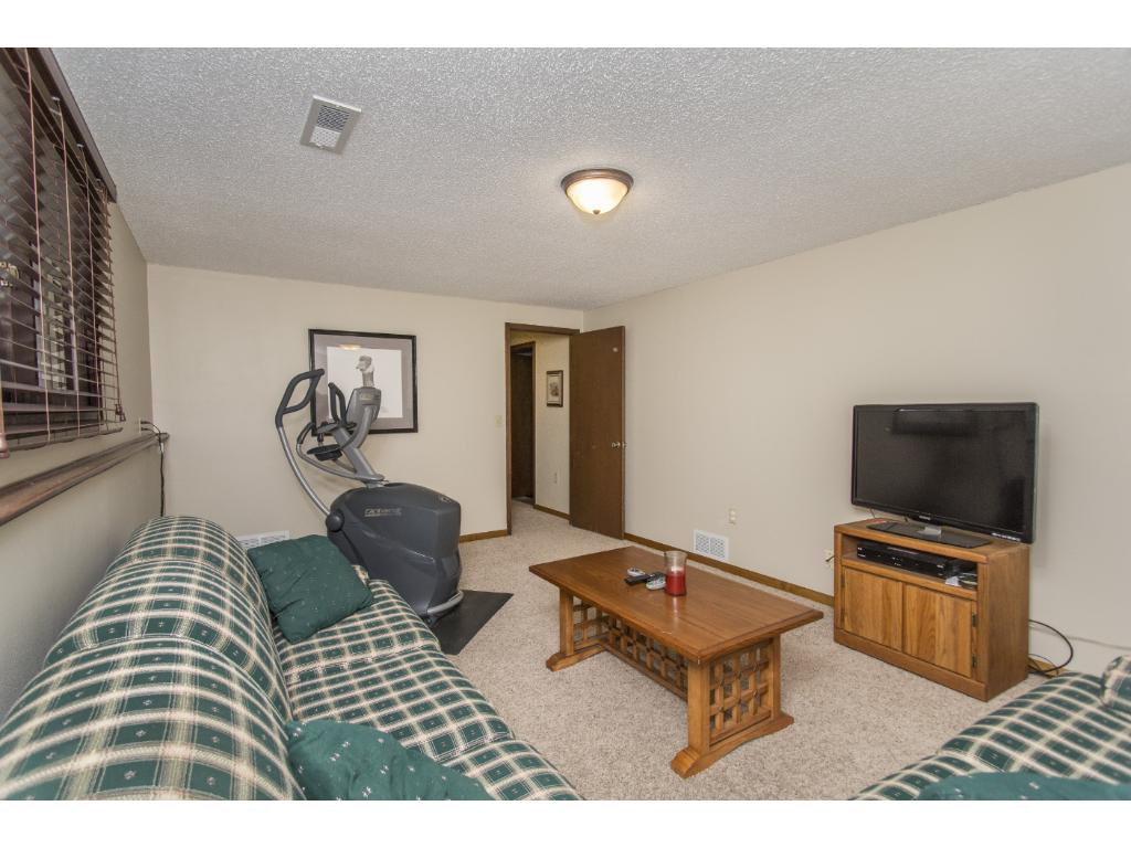 Lower level family room, perfect for an entertainment room, movie viewing or exercise.
