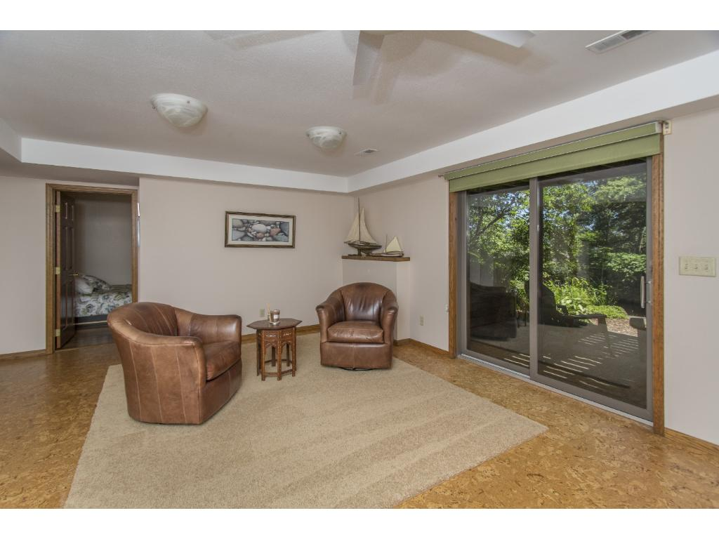 Lower level family room with slider to patio - lots of natural light!