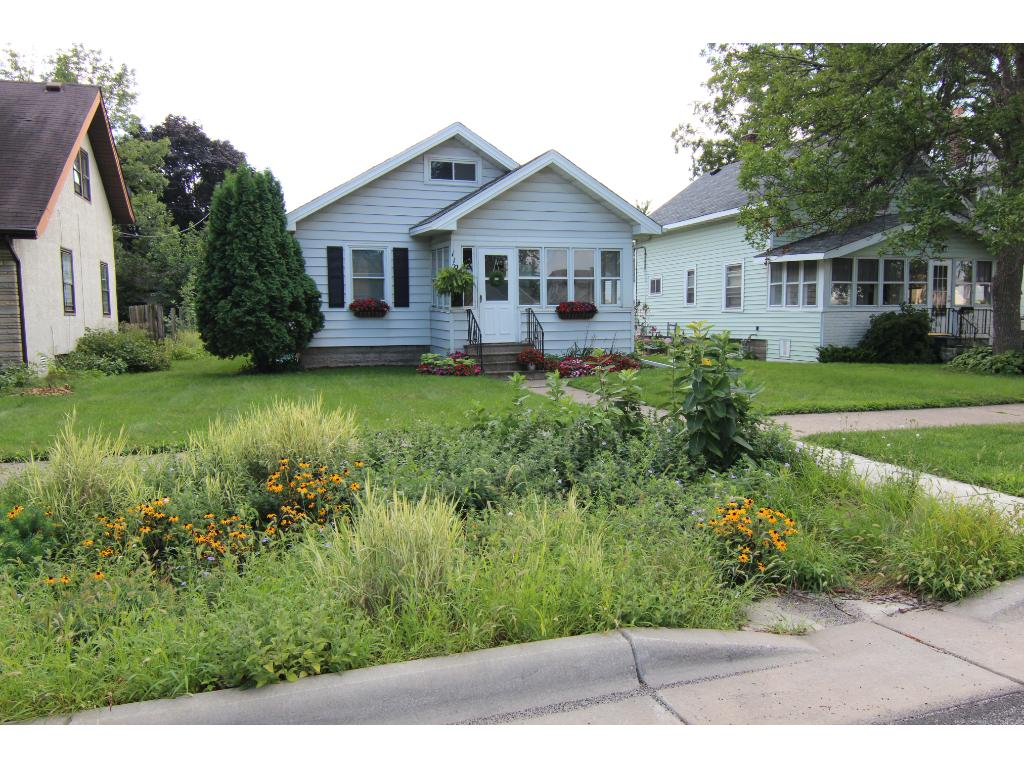 This home has a wonderful boulevard rain garden, filled with native plants.