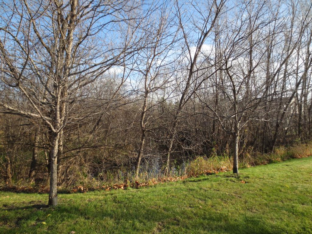 Peaceful Location - Facing Private Wooded/Nature Area!!
