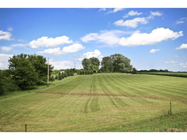 Electric fencing encompasses most of the approximately 7 acre pasture area for the horses!