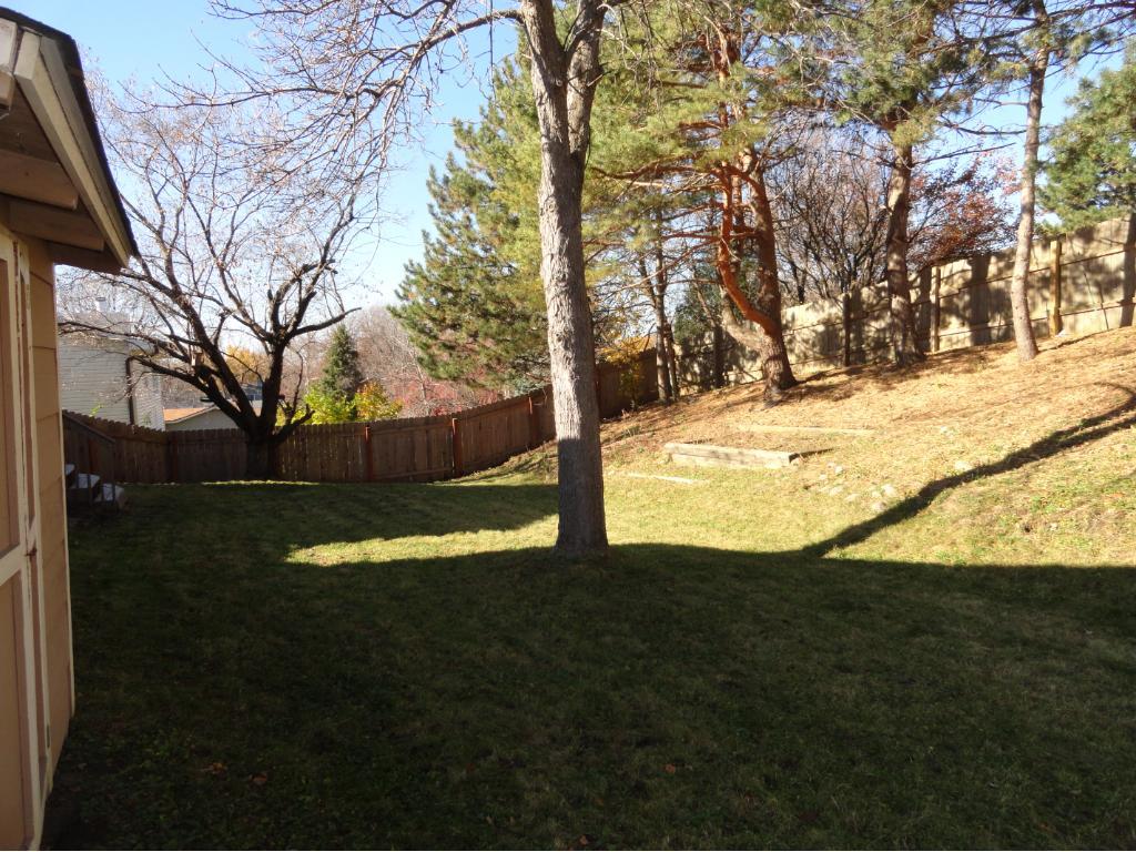 Great backyard.