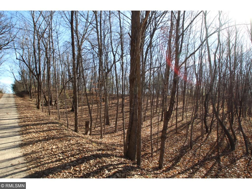 This is ideal acreage to build your dream home and walk out your back door to hunt.
