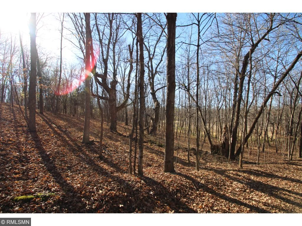 Certainly a hunters dream! Located just outside of Annandale, this is the quiet and secluded land you have been looking for.