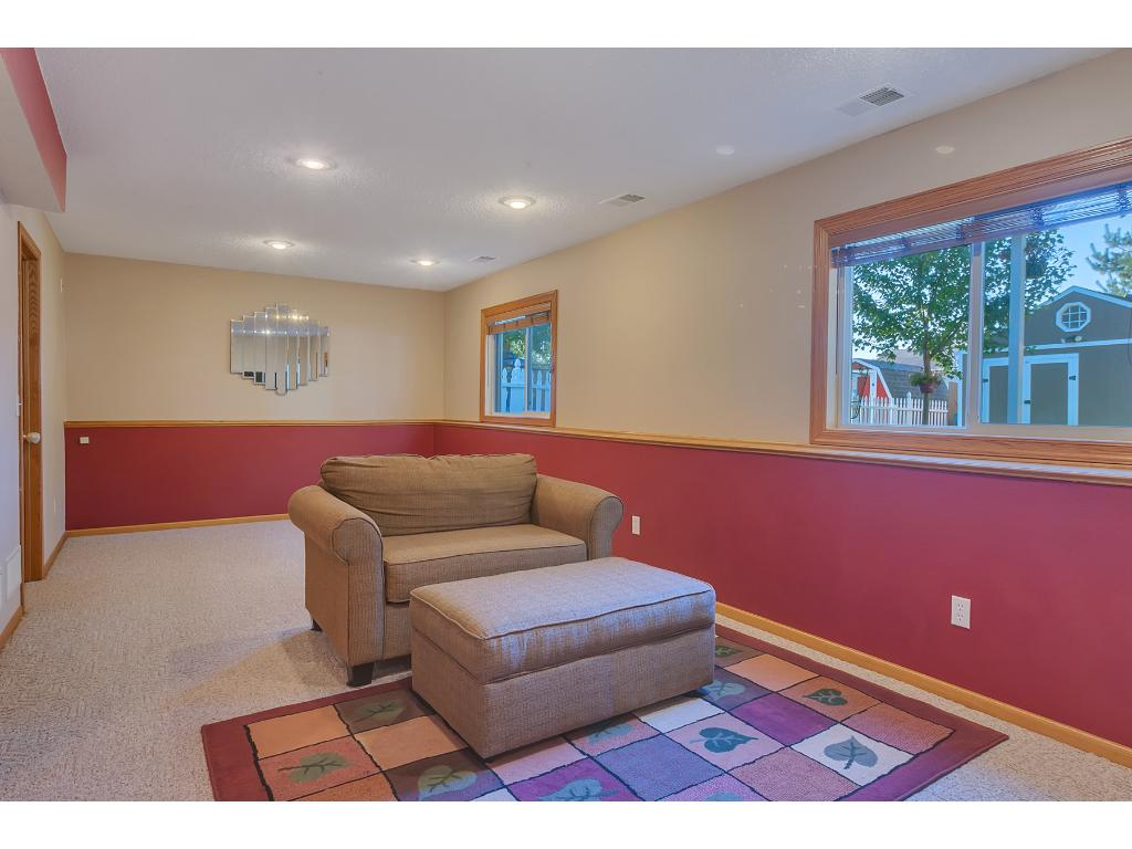 Family Room in the Lower Level