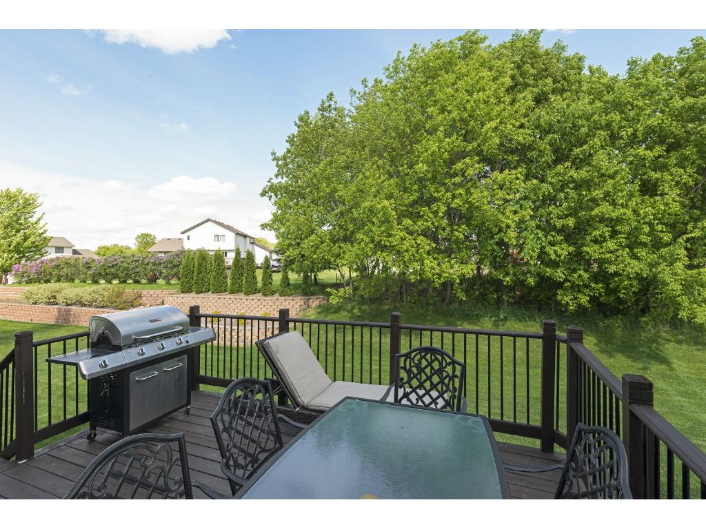 12448 Breanna Court, Rogers, MN - USA (photo 2)
