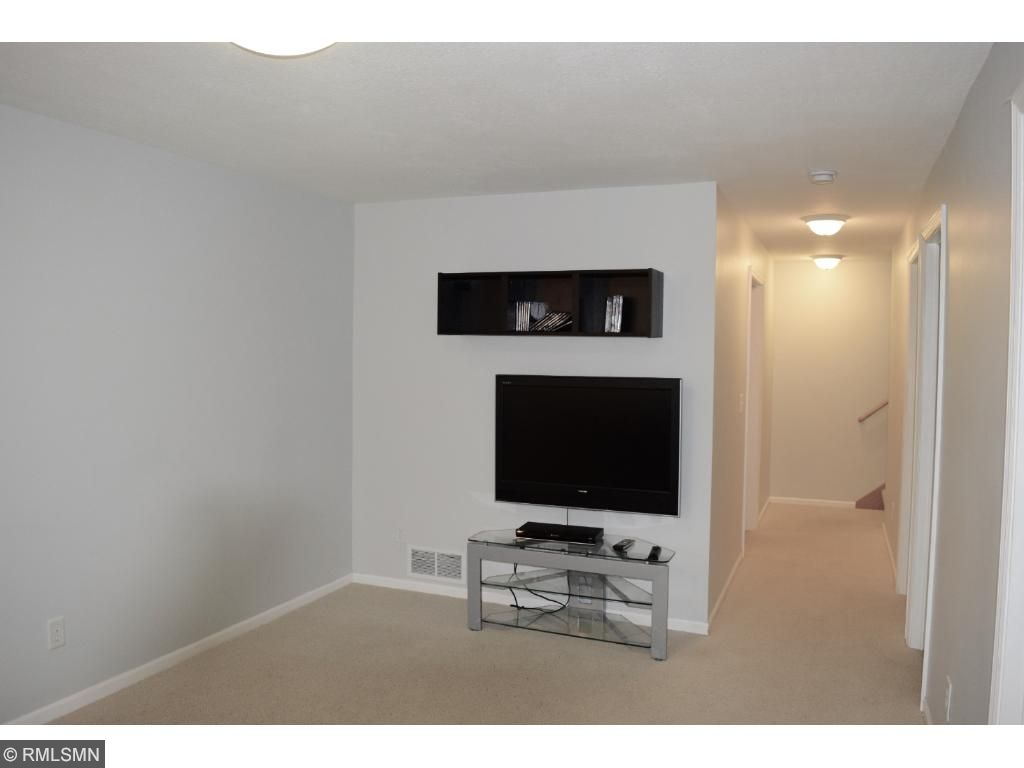 Lower level family room is perfect for watching tv, playing with the kiddos or just relaxing.