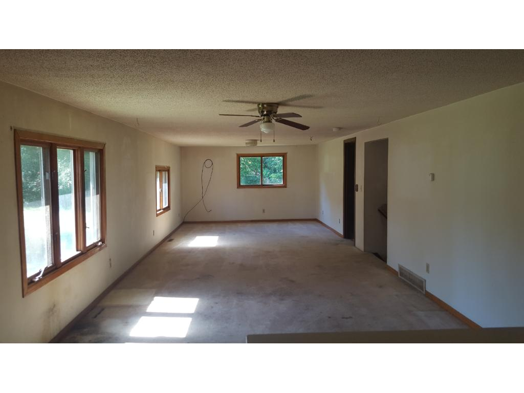 Spacious living room, and lower level family room.