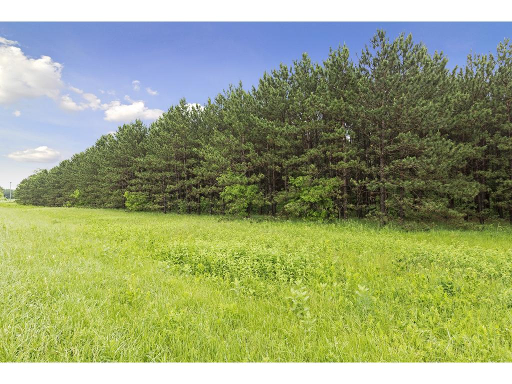 1297 Co Rd I, Hudson, WI  54016. Build your dream home on this ideal 15 Acre parcel near Hudson, Somerset, Stillwater and new St Croix Crossing bridge. And select your own builder!