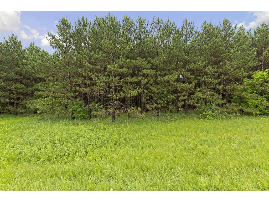 1297 Co Rd I, Hudson, WI  54016.  15 Acre parcel may possibly be split into 4 - 5 lots with 3 acre minimum in St Joe Township.