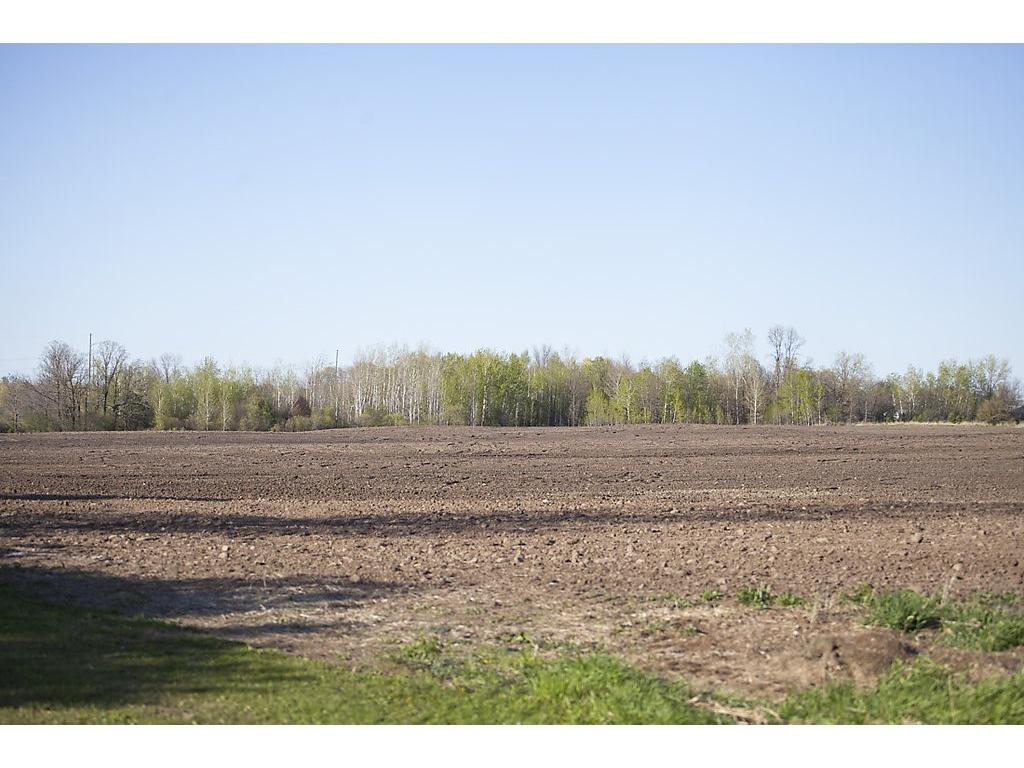 Excellent tillable acreage for the aspiring farmer or part of a hobby farm - great land!