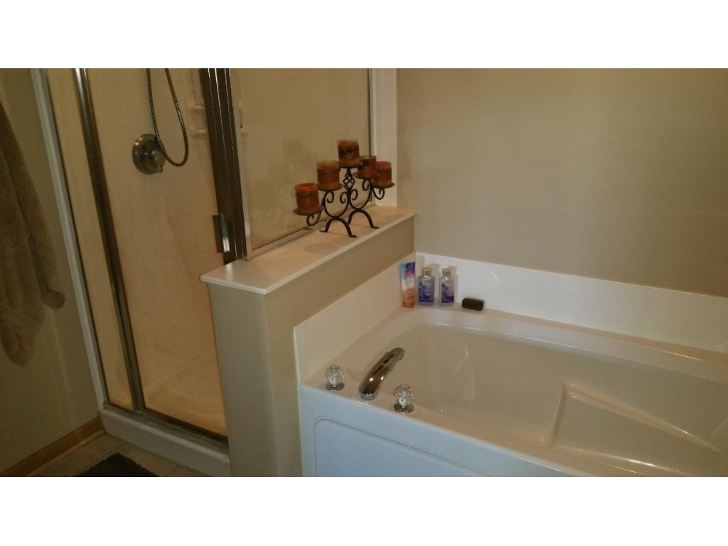 Private master bathroom is large with a separate  shower and soaking tub