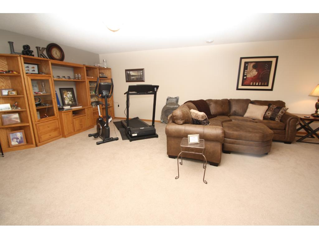 Large lower level walk out family room