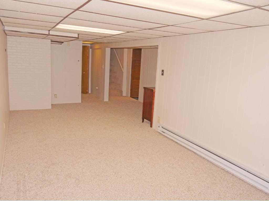 Lower level family room with new carpeting.