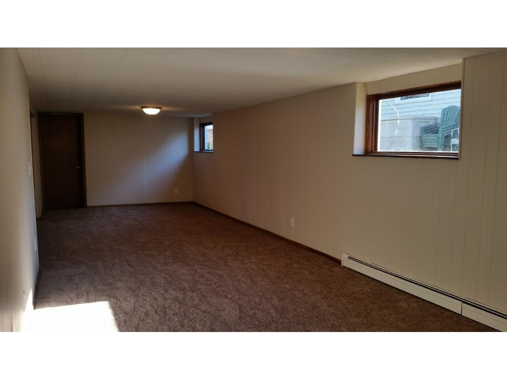 Large open family room in the lower level with lot of natural light.