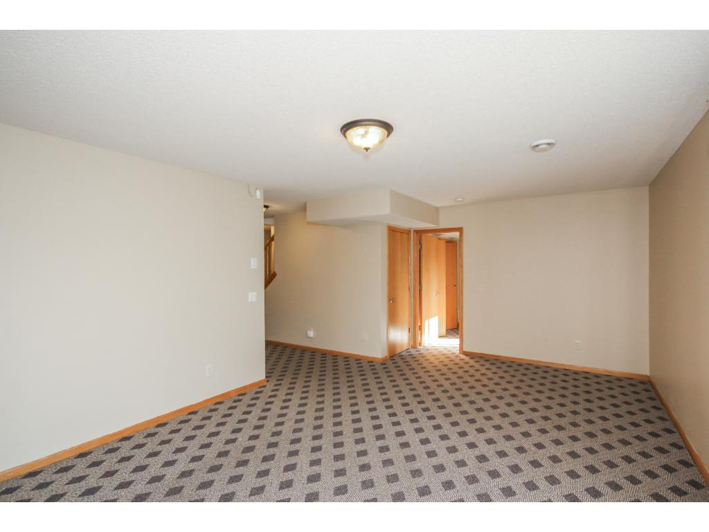 Additional view of lower level family room.