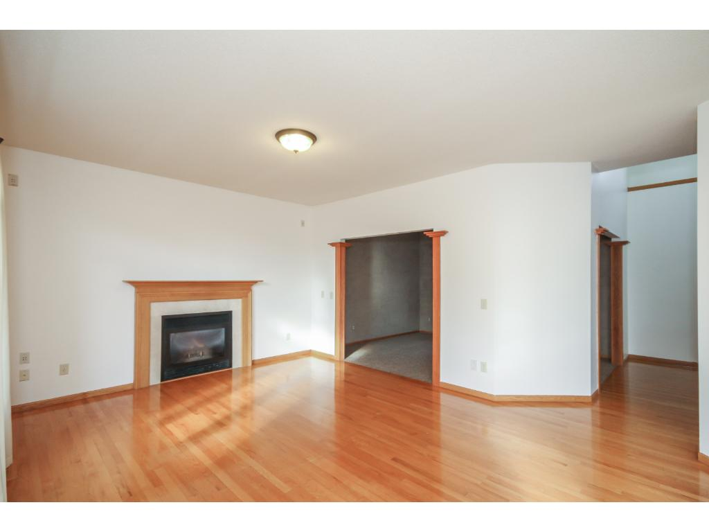 Family room with cozy gas log fireplace and sunny south facing windows.