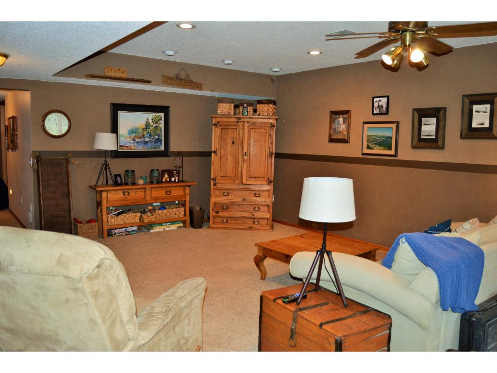 Lower level family room that walks out to the side yard.