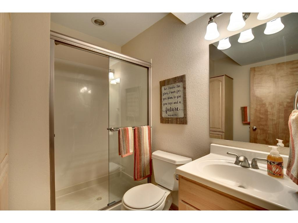 Lower level 3/4 bath with walk in shower and new shower door.