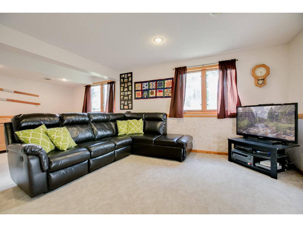 Cozy lower level family room with LOTS of space