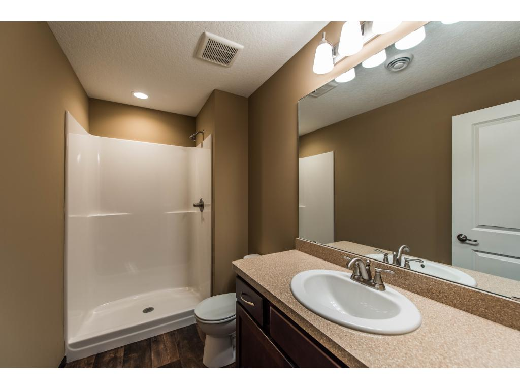 The Basement Bath also has a nice big countertop and Walk In Shower.