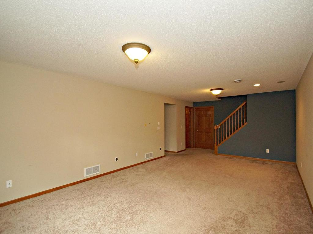 Large lower level family room with tons of space to sprawl.