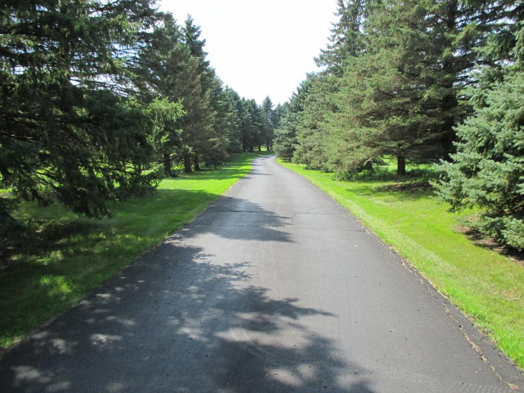 Long, spruce-line drive is private to the home.