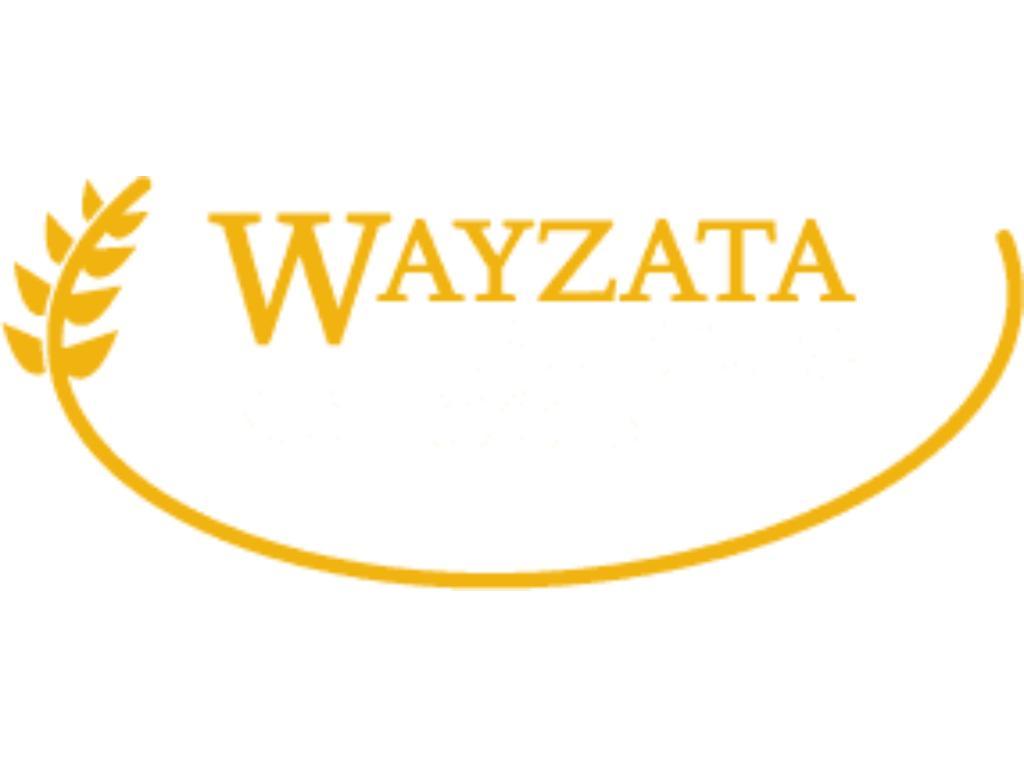 Demand Wayzata Schools!