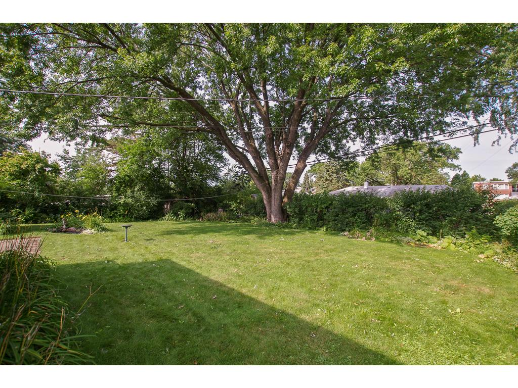 Mature Trees and a Fabulous Private Backyard With Established Flower Beds, Pond and Fountain