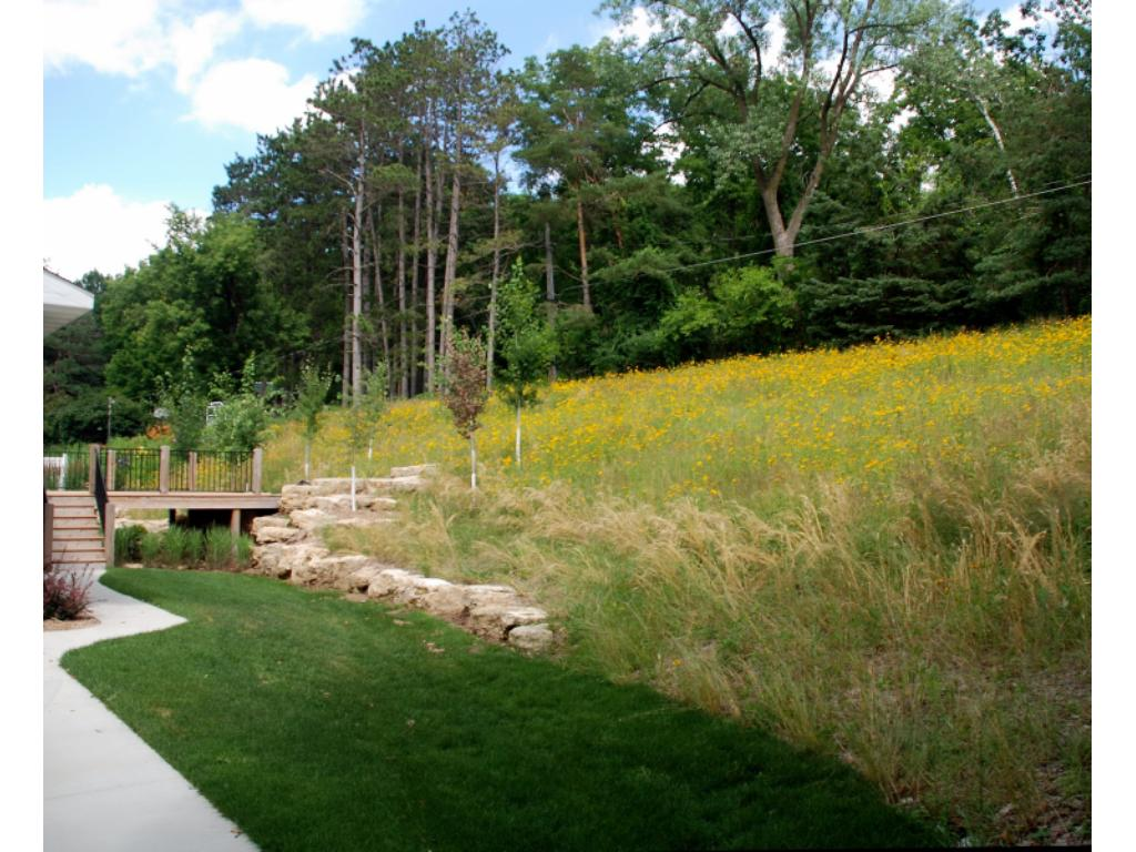 beautiful back yard is planted in prairie grass and wildflowers to match the neighbors