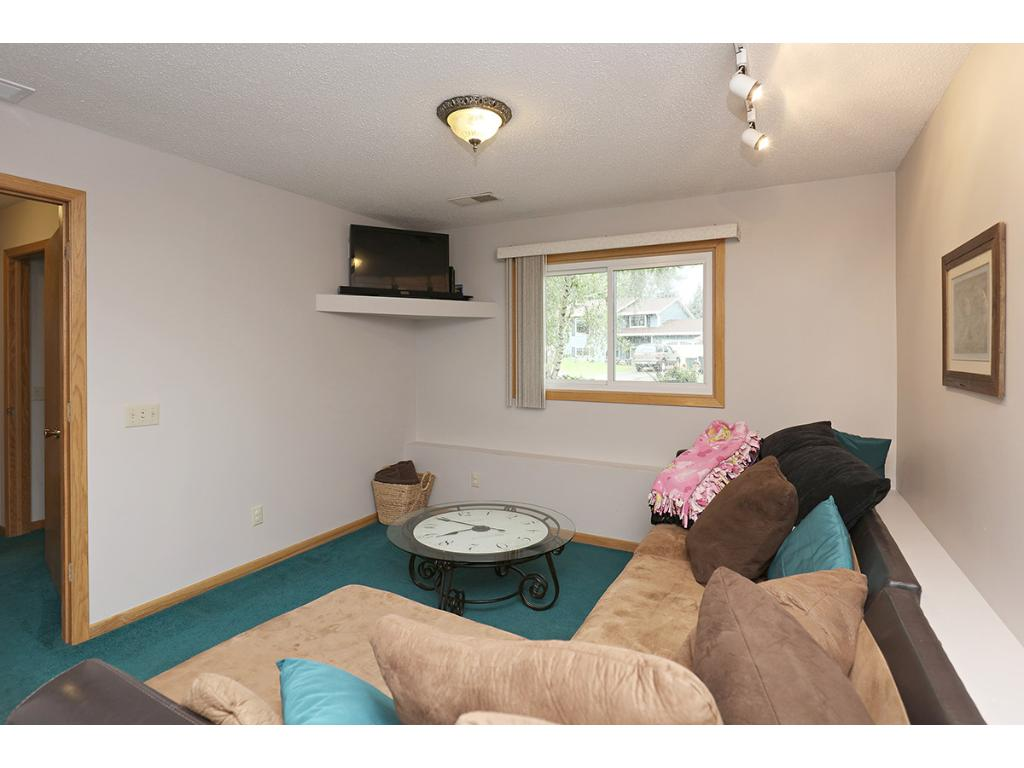 Amusement Room in the Lower Level Makes a Terrific Play Room, Exercise Gym or Hobby Space!